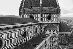 Firenze - Toscana - Italy