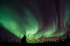 Skyward (Isaac Hilman (@lightofisaac)) Tags: longexposure blue portrait canada black green silhouette night stars solar nikon colorful vibrant profile aurora planets northwestterritories northernlights auroraborealis protons northof60 solarstorm extremesky d7000 aurorascape