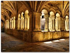 Claustro de los Obispos (Nati C.) Tags: arquitectura galicia monasterio hdr claustro orense santoestevo ribeirasacra cruzadasgold cruzadasi