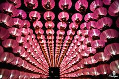 lanterns (zhongjianren76) Tags: twtmeiconoftheday