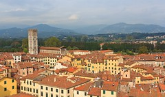 Lucca With the Amphitheatre, Tuscany Italy (Maria_Globetrotter) Tags: from italien italy panorama tower canon square landscape town day village view cloudy lucca roofs tuscany toscana viewpoint toscane italie itali toskana anfiteatro landskap  guinigi  wochy 550d 1585 mariasweden