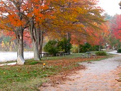 autumn at the lake (muffett68 ☺ heidi ☺) Tags: autumn lake fallfoliage sharonma