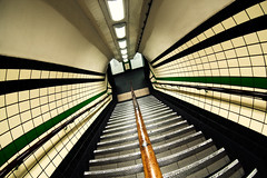 Lines (martinturner) Tags: uk england green london lines underground subway angle stripes curves tube wide steps stripe tunnel diagonal fisheye tiles toothpaste striped stripy tfl martinturner