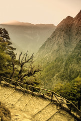 Sunset (Jukka75) Tags: light sunset mountain tree nature high stair gorge samaria wow1