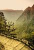 Sunset (Jukka75) Tags: light sunset mountain tree nature high stair gorge samaria wow1