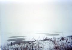 rsm 2000 05 29 Marshside RSPB (robsue888) Tags: snow southport merseyside