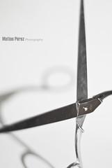 """Recortando"" (Matías Pérez) Tags: silver nikon plata plateado recortar tijeras d80 silvercolour colorplateado loscamaradasdecamardas"