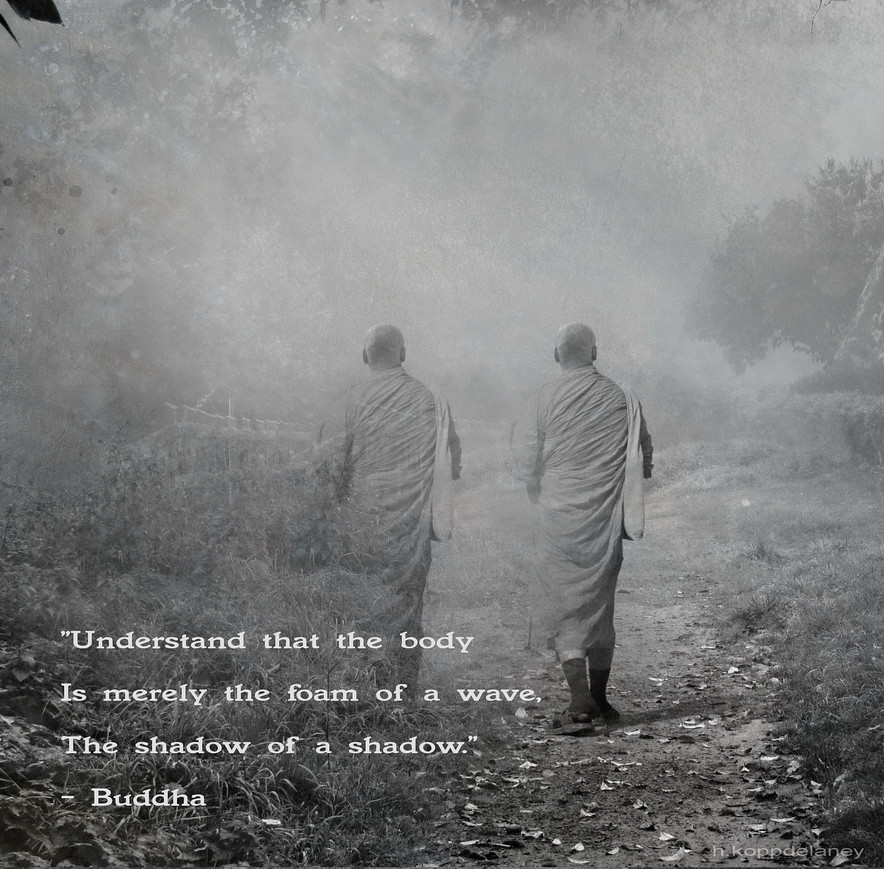 Wallpaper Buddha Quotes: The World's Most Recently Posted Photos Of Koppdelaney And