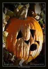 2012-295 (Pixelblender) Tags: orange black fall halloween face pumpkin october jackolantern ill rotten sick mouldy shrivelled