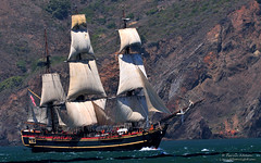 HMS Bounty Sinks in Hurricane Sandy (Darvin Atkeson) Tags: news movie golden coast gate san francisco sailing ship pirates sandy hurricane north guard mel tragedy carolina caribbean tall outer brando gibson bounty marlon 1962 sinks banks hms uscg