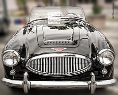 _PM43638-Edit (vandit1949) Tags: auto classic car austin nikon british healey d800 motorcar eurocars