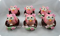 Corujas no ninho (Andria Morganas) Tags: party topo cake ninho fake biscuit owl coruja bolo festa aniversrio nascimento corujas lembrancinha decorativo toper