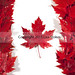 Historia de Canadá 12. El ocaso de las primeras naciones