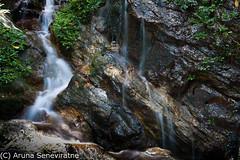 Silver Line (ArunaSene) Tags: nature water landscape scenery scenic scene snap boulders srilanka scape sinharaja arunaseneviratne arunasene