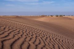 Sandy dunes of Chegaga, Sahara (Benjamin Gillet) Tags: road canon landscape eos sand desert dunes sandy dune m route morocco maroc maghreb 5d desierto hamid paysage marruecos m2 zagora marokko marroc wste deserto marrocos dsert fas magreb mark2 chegaga marocaine bivouac mhamid maroko   marok    pustinja  maghribi  maroka    marac marokk 5dm2  marip