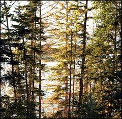 Barnett Lake -- Near Lacombe, Alberta, Canada (greenthumb_38) Tags: canada reunion rockies canadian alberta 2012 canadianrockies jeffreybass august2012 moseankoreunion