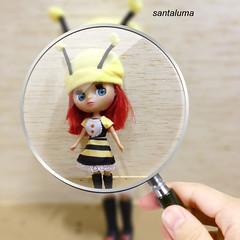 Alana ,achei uma abelhinha!!