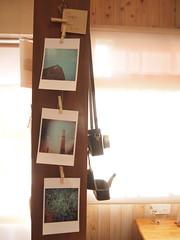 2013 トイカメラ写真展