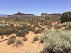 IMG_0052 (David J. Thomas) Tags: archesnationalpark moab utah mountains desert travel family vacation
