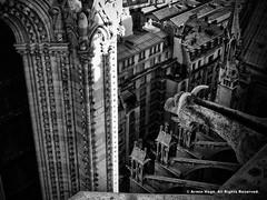 Notre Dame de Paris (Armin Hage) Tags: notredamedeparis chimera gargoyle grotesque gothic frenchgothic paris france notredame arminhage