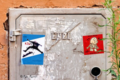 Roma. Rione Ponte. Street art-Sticker art by K2m, Fishes Invasion (R come Rit@) Tags: italia italy roma rome ritarestifo photography streetphotography streetart arte art arteurbana streetartphotography urbanart urban wall walls wallart graffiti graff graffitiart muro muri streetartroma streetartrome romestreetart romastreetart graffitiroma graffitirome romegraffiti romeurbanart urbanartroma streetartitaly italystreetart contemporaryart artecontemporanea rioneponte rione ponte sticker stickerart stickerbomb stickervandal slapart label labels adesivi signscommunication roadsign segnalistradali signposts trafficsignals glue colla k2m fishesinvasion centrostorico oldtown