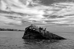 Remains of the S.S. Atlantus (Digital Biology) Tags: capemay ruin ship cement cormorant