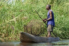 Fish trap on Shire River, Liwonde, Malawi (Sekitar) Tags: malawi eastafrica afrique africa east fish trap shire river liwonde