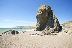 Goat Rock Beach, CA (DClemm) Tags: goatrockbeach sonomacounty highway1 pch d80