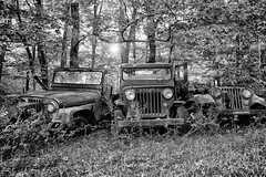 (soulshine59) Tags: willys jeep