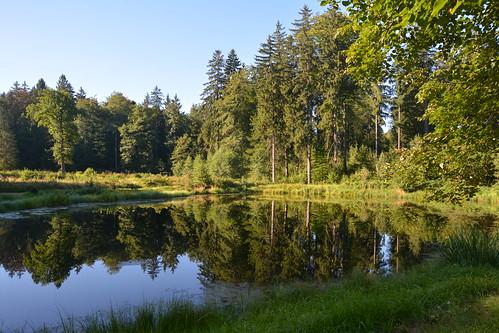 Schloßpark Staniszów