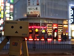 DSC04559_20160331 (Snow_owl) Tags:   tokyo figure