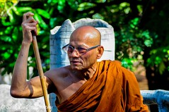 Thailand Tiger Temple Monk (SleekViv) Tags: thailand nikon monk d90