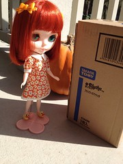 Carrot, your new sister has arrived from Japan!