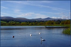 VIEW OF THE HILLS (henrhyde (gill)) Tags: autumn lake wales boat sony swans penyfan llangorse cribyn llangorselake breconshire