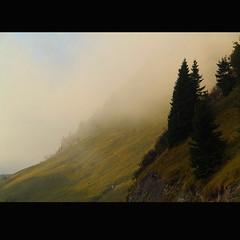 in the mist (Alessandra Vivori) Tags: sail ccf vision100 bestcapturesaoi elitegalleryaoi asquarelegend asquareframes