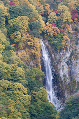 Kanmandaki Waterfall (peaceful-jp-scenery) Tags: autumn landscape waterfall sony explore    tamron shigakogen lightroom amount   a001   dslra900 900 spaf70200mmf28di
