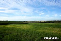 Meadow (Frank Heim) Tags: blue green clouds landscape heaven meadow wiese himmel gras landschaft rheinlandpfalz