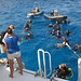 "Dive Platform • <a style=""font-size:0.8em;"" href=""http://www.flickr.com/photos/44146977@N05/8126587110/"" target=""_blank"">View on Flickr</a>"
