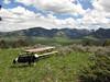Montana Elk Hunt - Bozeman 17