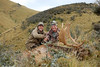 New Zealand Red Stag Hunting - Christchurch 28