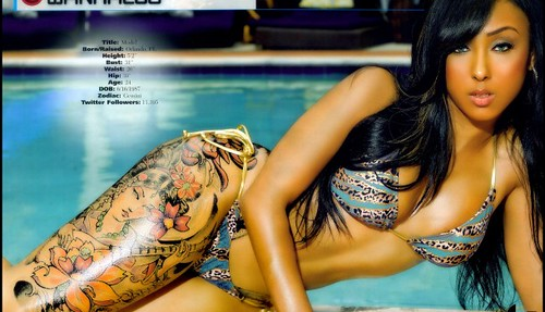 Wankaego-All-Hip-Hop-Models-1-610x350