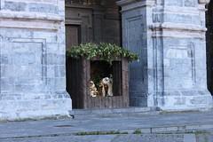 2013_Urdua_034 (aiaraldea.com) Tags: gabonak jaiotza urdua erlijioa erregemagoa belenak