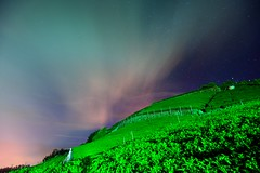 Night in Tea field @ (Vincent_Ting) Tags: sunset sky clouds taiwan  formosa  jiayi   seaofclouds alisan    teafield