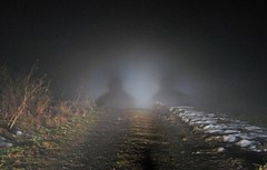The Guardians (Sea Moon) Tags: road light fog dark shadows beam spooky ghostly figures apparitions