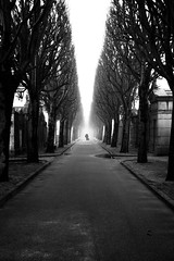 [Silence] (ez90) Tags: trees white man black france cemetery fog canon french noiretblanc mark arbres ii 5d fogy cimetiremisericorde