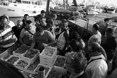 Porto di Sciacca (VincenzoGuasta) Tags: sciacca sicilia sicily pesce mercato fish market bianco nero bw black white