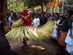 Dancing god (Evgeni Zotov) Tags: индия india inde indien indië indie índia hindistan الهند インド 인도 印度 भारत הודו kerala malabar kannur cannanore religion hinduism shaivism theyyam theyyattam khandakarnantheyyam khandakarnan shiva ceremony ritual god avatar people man malayali dravidian dance dancing music crowd dynamic quick fast move movement skirt palm palmleaf rotate