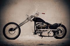 bikes-2009world-086-c-l