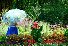 64. Under the weather - 116 pictures in 2016 (Krasivaya Liza) Tags: 64 undertheweather summer weather sun umbrella gardens floral flowers 116 pictures 2016 116picturesin2016 georgia ga