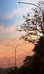 Sunset (imtiakash@ymail.com) Tags: street chittagong bangladesh sunset goldenhour lumiaphotography lampost